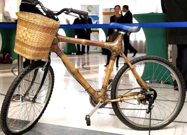 Bamboo bicycle